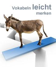 Eselsbrücken zum Finnisch lernen